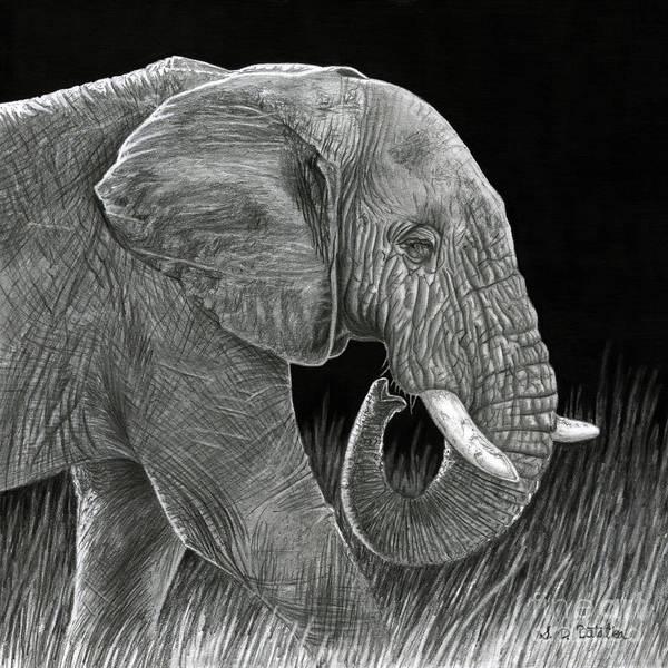 Wrinkle Wall Art - Drawing - Ancient by Sarah Batalka