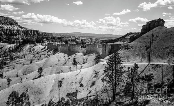 Photograph - Ancient Wall, Black And White by Adam Morsa
