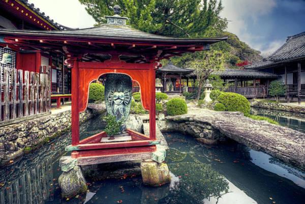 Wall Art - Photograph - Ancient Water Garden by Wayne Sherriff