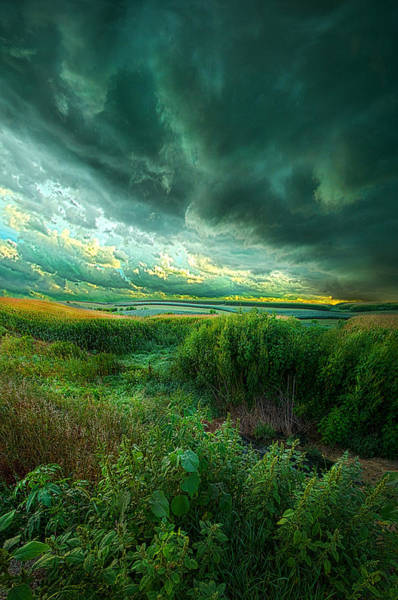 Summer Storm Photograph - And For A Moment It Was Silent by Phil Koch
