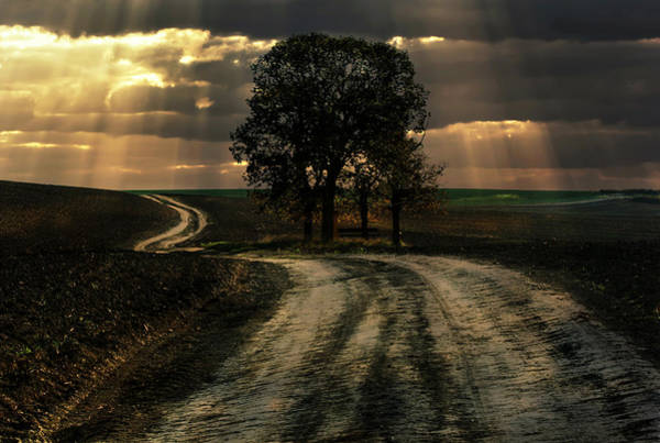 Photograph - An Old Forgotten Road by Jaroslaw Blaminsky