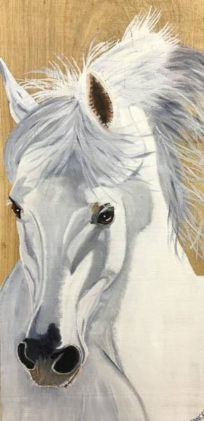 Andalusian Stallion Wall Art - Painting - Andalusian by Debbie LaFrance