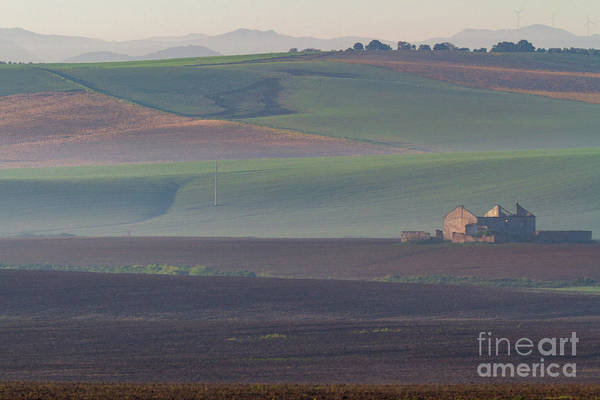 Photograph - Andalusian Fields In Morning Mists by Heiko Koehrer-Wagner