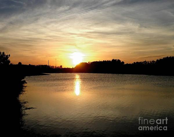 Anderson Stormwater Park In Rockledge Florida Art Print