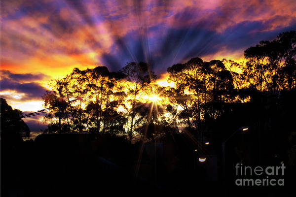 Wall Art - Photograph - Andes Sunrise Over The Bosque De Monay by Al Bourassa