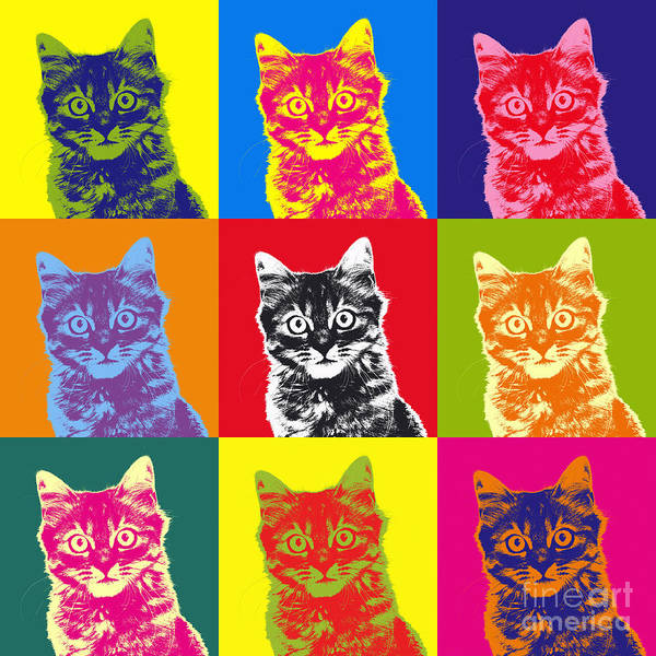 Warhol Photograph - Andy Warhol Cat by Warren Photographic