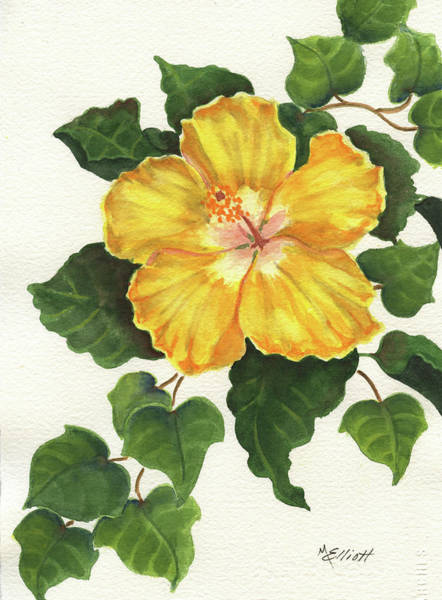 Tropical Garden Painting - Andys Hibiscus by Marsha Elliott