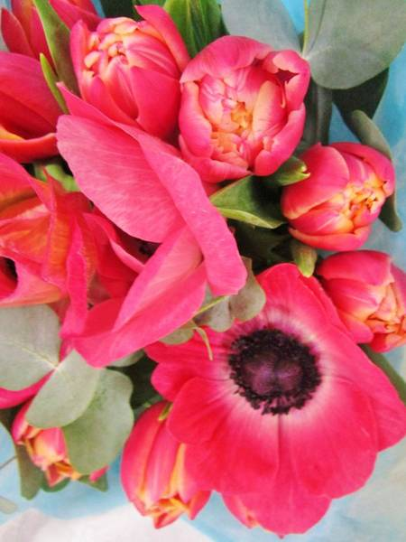Photograph - Anemones And Tulips by Rosita Larsson