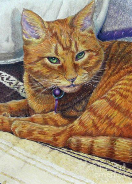 Orange Tabby Drawing - Angel by Beverly Fuqua
