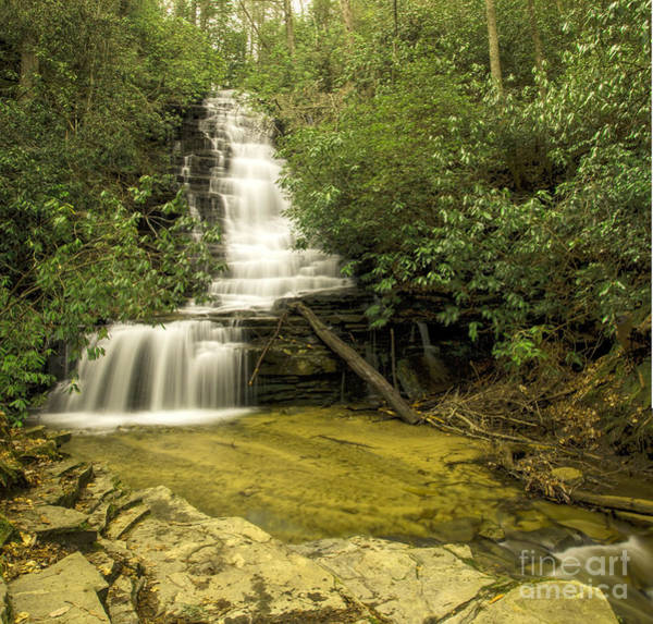 Photograph - Angel Falls by Barbara Bowen