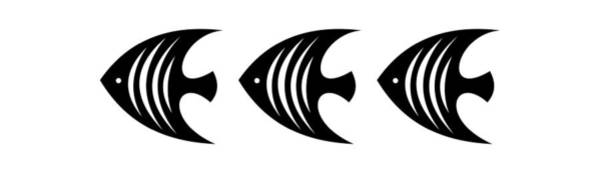 Digital Art - Angel Fish Trio  by Donna Mibus
