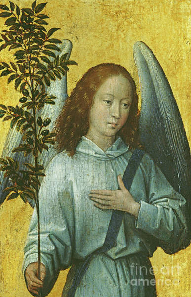 Wall Art - Painting - Angel Holding An Olive Branch by Hans Memling