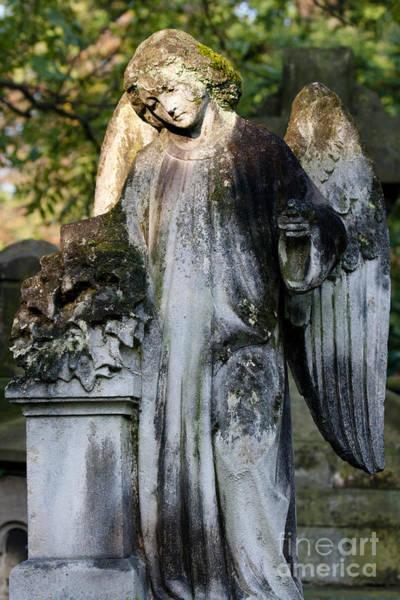 Cementery Photograph - Angel II by Marta Grabska