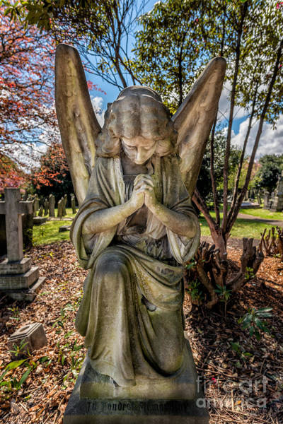 Wall Art - Photograph - Angel In Prayer by Adrian Evans