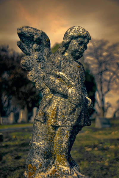 Photograph - Angel by Jemmy Archer