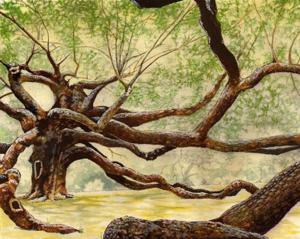 Angel Oak Painting - Angel Oak by Thomas Hamm