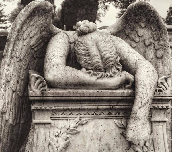 Photograph - Angel Of Grief by Gia Marie Houck