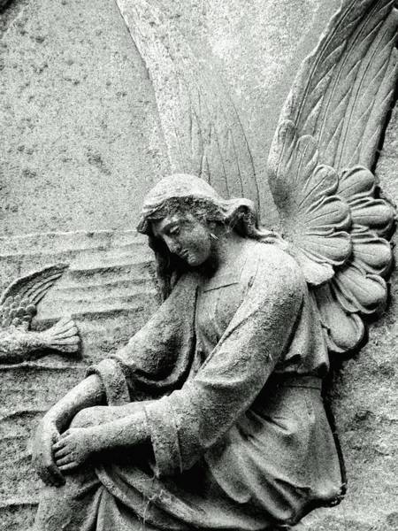 Photograph - Angel Rests by Wild Thing