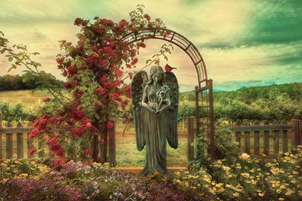 Cemetery Ridge Photograph - Angel Softness In The Garden by Debra and Dave Vanderlaan