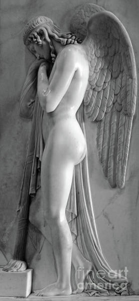 Photograph - Angel Statue In St.peters Basilica by Gregory Dyer
