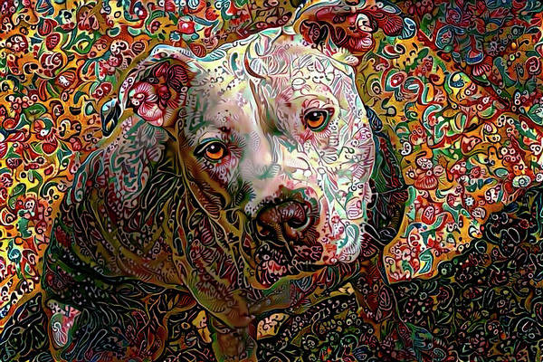 Photograph - Angel The Pit Bull American Bulldog by Peggy Collins