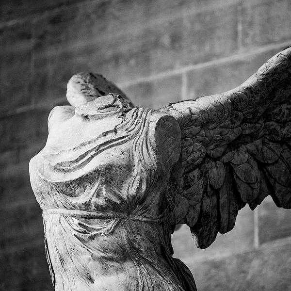 Wall Art - Photograph - Angel Wing - #2 by Stephen Stookey