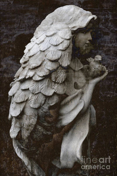 Mixed-media Photograph - Angel With Dove Of Peace - Angel Art Textured Print by Kathy Fornal
