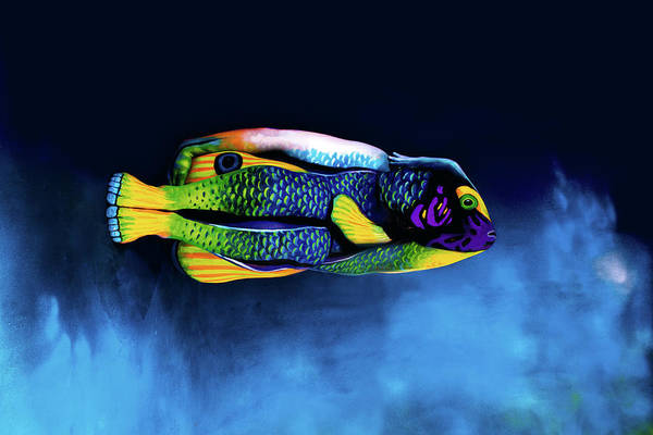 Bodypaint Wall Art - Photograph - Angelfish Bodypainting Illusion by Johannes Stoetter