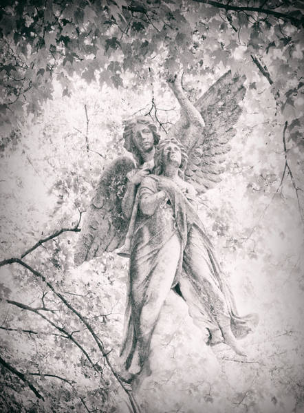 Photograph - Angelic  by Jessica Jenney