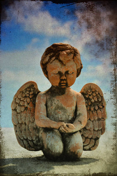 Photograph - Angels With Dirty Faces by Bill Cannon