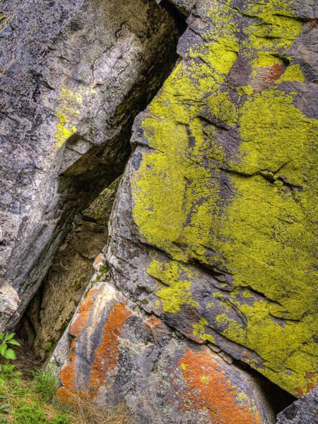 Orange Lichen Photograph - Angle Of Lichen by Jean Noren