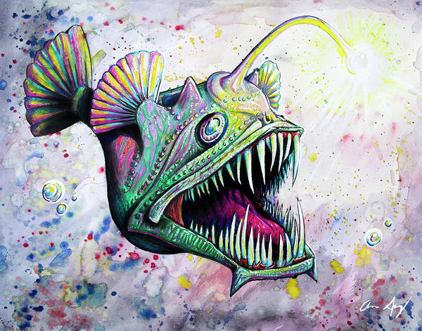 Drawing - Angler Fish by Aaron Spong