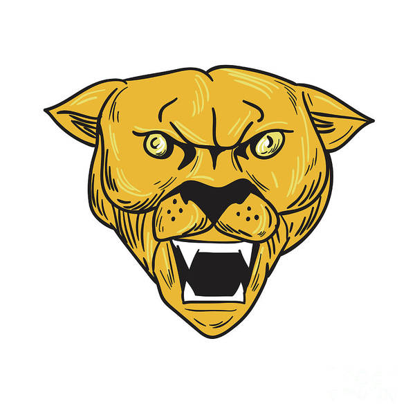 Mountain Lion Digital Art - Angry Cougar Mountain Lion Head Drawing by Aloysius Patrimonio