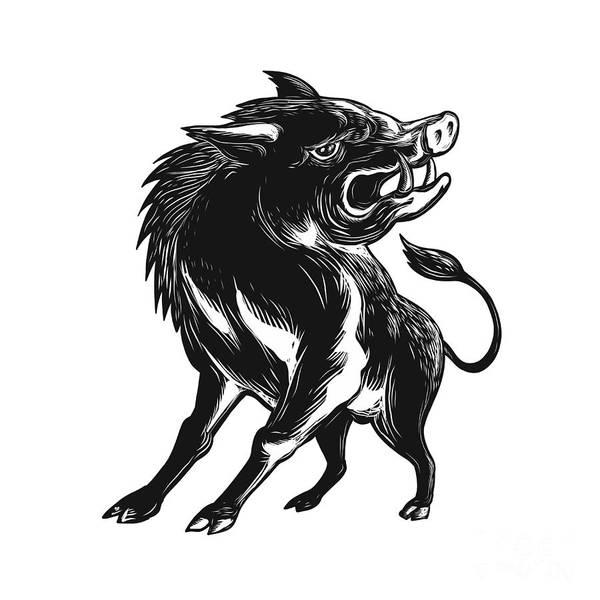 Scratchboard Wall Art - Digital Art - Angry Wild Hog Razorback Scratchboard  by Aloysius Patrimonio