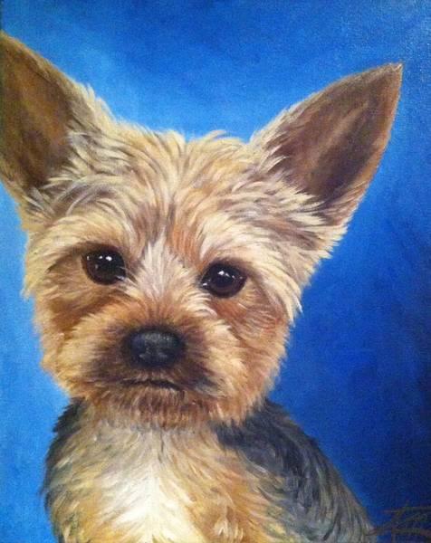Painting - Angus by Ana Marusich-Zanor