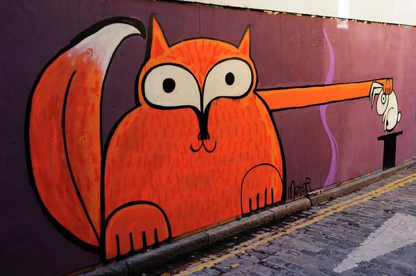 Wall Art - Photograph - Animal Magic Graffiti by Liz Pinchen