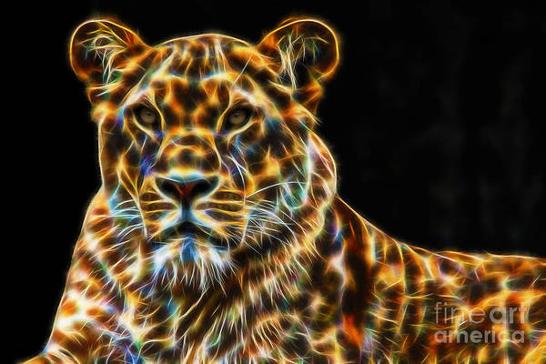 Digital Art - Animal Royalty - Lioness Fractal by Tracey Everington