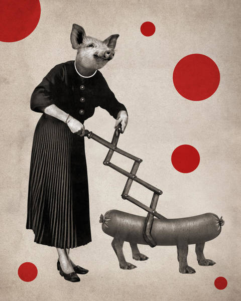 Delicatessen Photograph - Animal9 by Francois Brumas