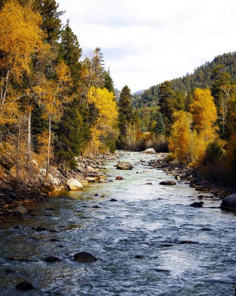 Photograph - Animas River by Kurt Van Wagner