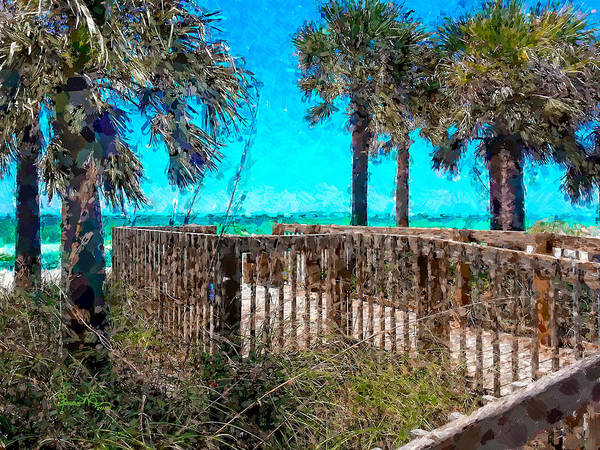 Photograph - Anna Maria Boardwalk Access by Susan Molnar