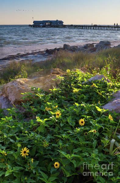 Photograph - Anna Maria Island, Florida #30134-35 by John Bald