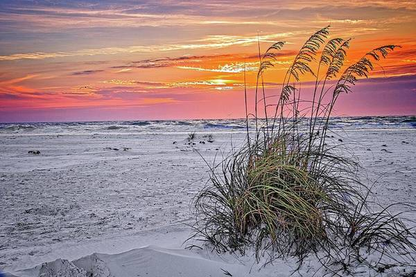 Photograph - Anna Maria Island Sunset by Ronald Lutz