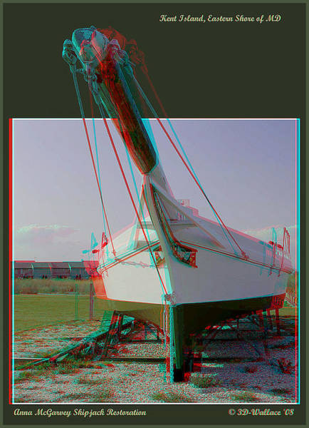 Anaglyph Photograph - Anna Mcgarvey - Use Red-cyan 3d Glasses by Brian Wallace