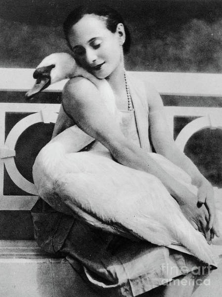 Wall Art - Photograph - Anna Pavlova With Her Pet Swan Jack, 1905 by English School