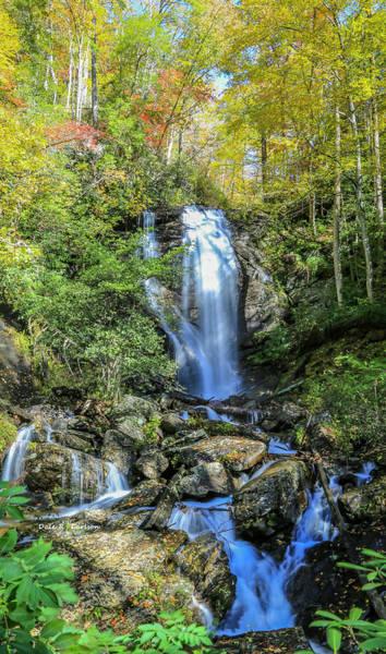 Photograph - Anna Ruby Falls by Dale R Carlson
