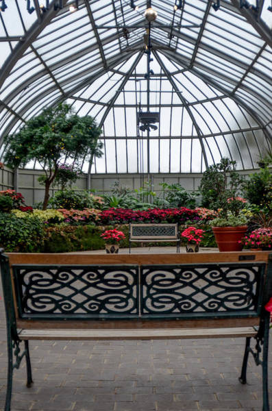 Photograph - Anna Scripps Whitcomb Conservatory by Randy J Heath