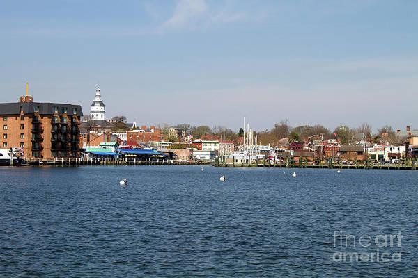 Photograph - Annapolis City Skyline by Steven Frame