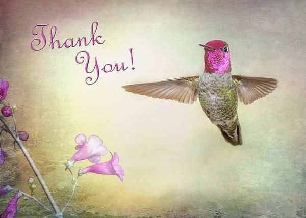 Photograph - Anna's Hummingbird  by James Capo