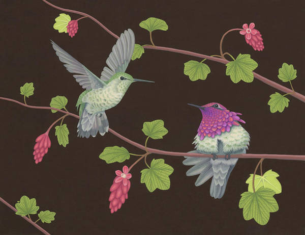 Wall Art - Painting - Anna's Hummingbirds by Nathan Marcy