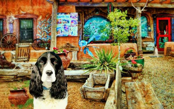 Wall Art - Photograph - Annie At San Marcos Cafe by Diana Angstadt